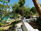 Korcula charming stone house by the sea – the house is surrounded by wonderful Mediterranean vegetation