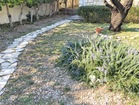 Charming hand-made path for reaching the sea - 4 bedroom beachfront house in Orebic, Croatia